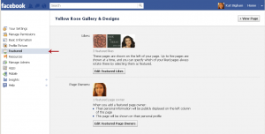 Facebook Page Featured Likes and Page Owners